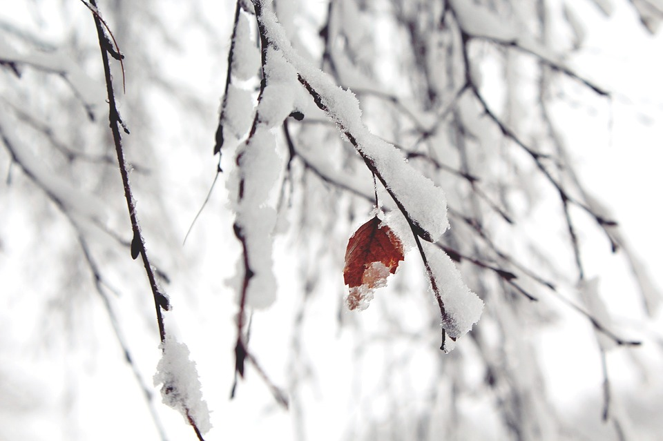 snow-1148773_960_720